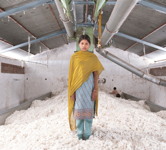 Lavoratrice del cotone nel Maharashtra, India.